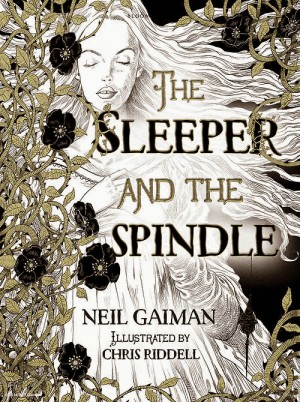 The Sleeper And The Spindle by Chris Riddell